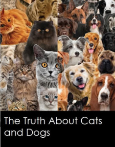 196201410-Think-12_cat_facts1