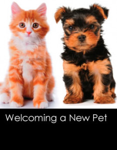 210201310-welcomenewpet