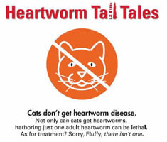0000005-Tall_Tales_cats