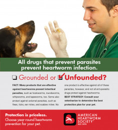 03-Parasiticides-prevent